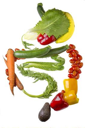 Verdauungs - Verdauungstrakt aus Gemüse